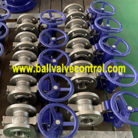 Worm gear flange type segmented ball valves